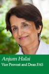Anjum Halai
